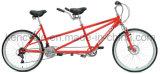 bici in tandem di vendita 26inch dei cavalieri caldi MTB del professionista due/bici in tandem