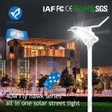 indicatore luminoso solare del giardino dell'indicatore luminoso di via 40W LED con il comitato solare