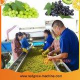 Виноградный обрабатывающего станка