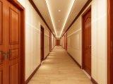 Nouveau produit direct d'usine de bois pour salle de bains intérieure de porte en plastique