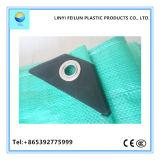La bâche de protection de couleur vert clair de haute qualité à prix satisfaisant