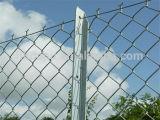 自動二重金網のチェーン・リンクの塀機械