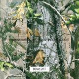 حقيقيّة شجرة ورقة [كمو] [هدرو] أفلام ([بد120ت])