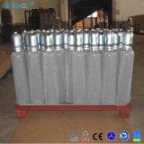 De hete Cilinder van de Kooldioxide van de Fles van het Gas van Co2 van het Staal van de Hoge druk van de Goedkeuring van Ce van de Verkoop