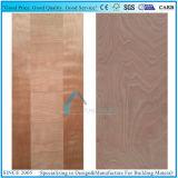 Contre-plaqué de peau de porte/panneau/Puertas moulés bon marché de porte