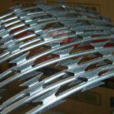 電流を通されたステンレス鋼の有刺鉄線