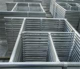 China fabricante de aço leve tipo escada de andaimes