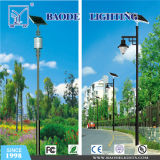 주문을 받아서 만들어진 Module 40/100W Solar LED Street Light (BDTYN40)