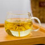 Hohe Borosilicat-Glas-Teekanne/Flasche/Cup für bilden Tee
