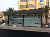 Steel di acciaio inossidabile Bus Shelter per Station (HS-BS-020)