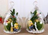 Dekorative Glasgroßhandelskugeln für Hochzeits-Dekoration