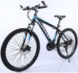 China-Fahrrad-Fabrik-Großverkauf-Gebirgsfahrrad/Gebirgsfahrrad
