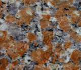 De goedkope Plak van het Graniet van de Esdoorn Rode voor Decoratie/Component/Countertop