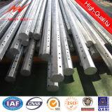 Pôle en acier galvanisé par professionnel