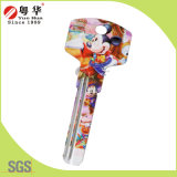 Fabbrica Price Hot Sales Custom Mini Key variopinto Blank per Key Machine