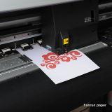 Отсутствие бумаги передачи тепла Weeding собственной личности отрезока для хлопко-бумажная ткани