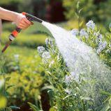 Boyau de jardin de l'eau