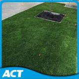 يرتّب عشب اصطناعيّة لأنّ حديقة ([ل35-ب])