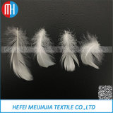 La tessile che riempie l'anatra lavata bianca naturale /Goose di 100% giù mette le piume a