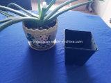 Black PS Flower Pot Carré d'emballage en étain, jardin d'étain Flower Plantin