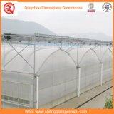 Maison Verte en Plastique Agricole / Commerciale / Jardin avec Système de Refroidissement