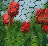 Collegare di pollo esagonale di Sailin per il giardino