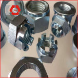 DIN 935 Hexgon Slotted and Castle Zinc Plated Nut