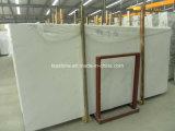 Lastre di marmo bianche di Ariston dalla Grecia