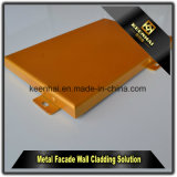 Panneaux en aluminium à l'extérieur ou en intérieur personnalisés en couleur avec revêtement PVDF