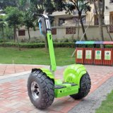 Il più nuovo fuori dal motorino elettrico di golf di Hoverboard del vagone per il trasporto dei lingotti della strada
