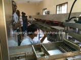 Сахар шишки Китая профессиональный делая производственную линию кубика сахара машины