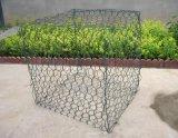PVC上塗を施してある六角形のGabion金網ボックス