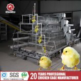 een type 3 de Kooien van de Kip van het Landbouwbedrijf van Banden voor 20000 Kippen voor maakt Eieren (a-3L90)