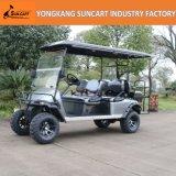 4+2 Sitzgolf-Auto-Export zum nordamerikanischen, kundenspezifischen Golf-Auto mit angestrichenen Rädern