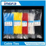 L'alta qualità rapidamente trasporta la fascetta ferma-cavo di nylon dei legami di plastica della chiusura lampo della data per la fune ed il cavo del gruppo