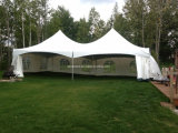 Tenda calda del Gazebo del policarbonato di vendita 6X3m per gli eventi pubblici e privati