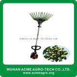 Mietitrice verde oliva della macchina verde oliva di raccolto da vendere