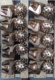 Vástago redondo exfoliante de perforación del sinfín de Bullet dientes