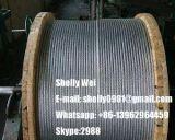 """ASTM un filo Zinco-Rivestito del filo di acciaio 475 1*7 con il formato 1/4 """", 3/8 """", 5/16 """", 7/16 """", 1/2 """""""