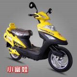 Motorino elettrico approvato del CE (KT-0811003)