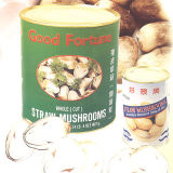 Funghi canned Straw
