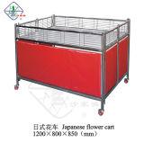 Plower estilo japonés de la cesta