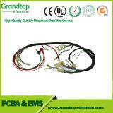 Connector&#160 elettrico automatico; Cablaggio di collegamenti