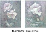 Arte emoldurada (TL-2753AB)