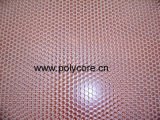 Transparent PC Honeycomb Panel pour Décoration