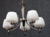 Lampe pendante (D-61055/5)