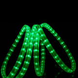 La lumière de corde de DEL (SRRLS-2W)