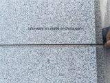 Bon marché/a flambé le granit gris G603 d'Impala pour le mur/carrelage