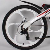 Высокоскоростной электрический Bike с индикацией Tde01 LCD