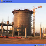 50m de longitud de pluma 1ton de carga de la punta de la grúa torre eléctrica 5010